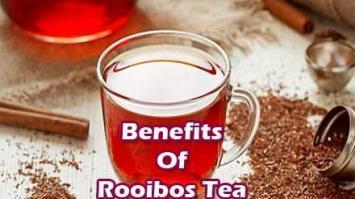 benefits-of-rooibos-tea