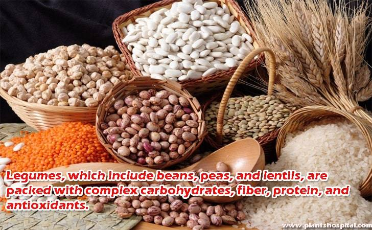 Legumes-which-include-beans-peas-and-lentil
