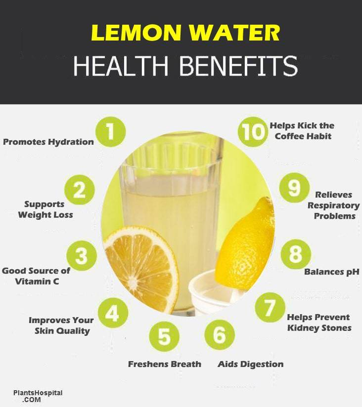 lemon-water-graphic