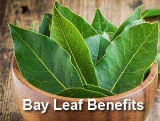 bay-leaf-benefits