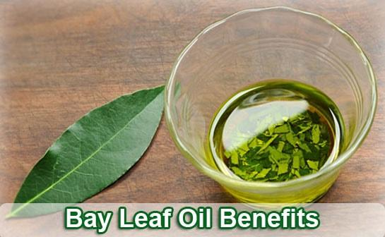bay-leaf-oil