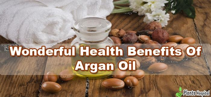 argan-oil-benefits