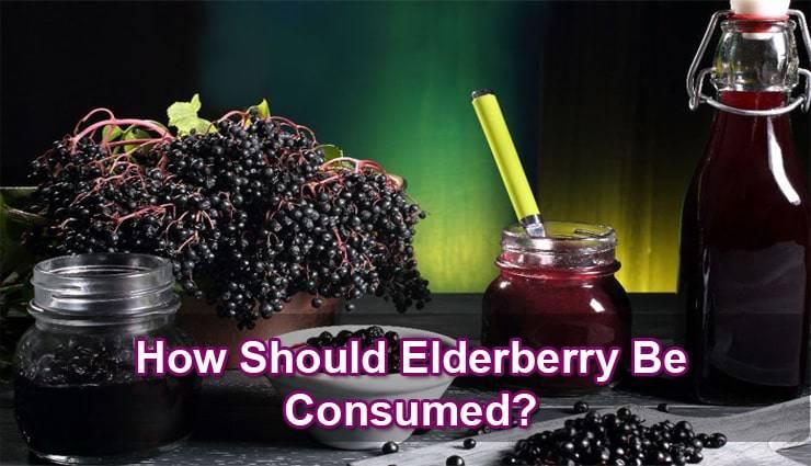 elderberry-benefits
