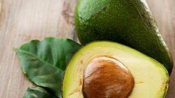 avocado-leaves-benefits