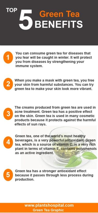 green-tea-graphic