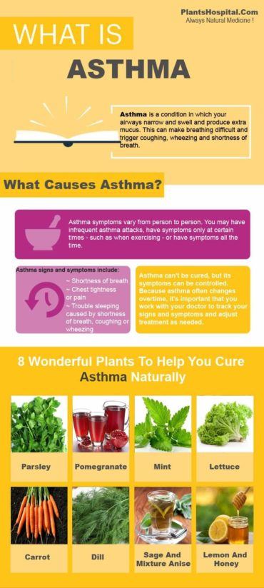 AsthmaGraphic