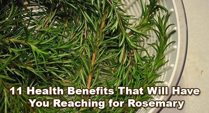 Rosemary-benefits