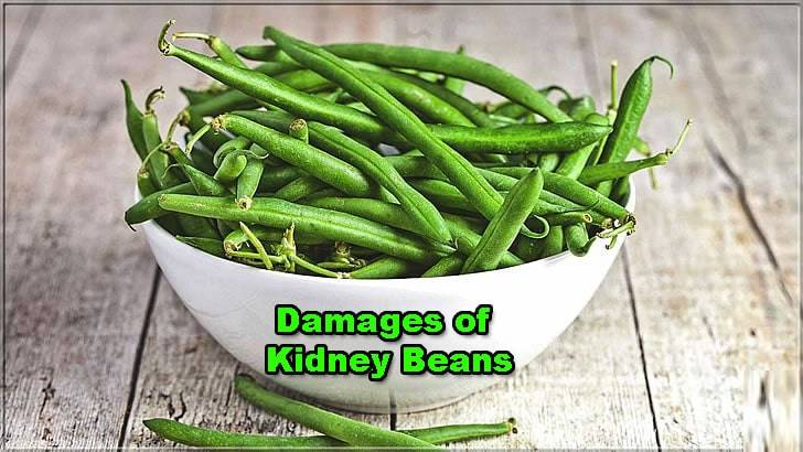benefits-of-kidney-beans
