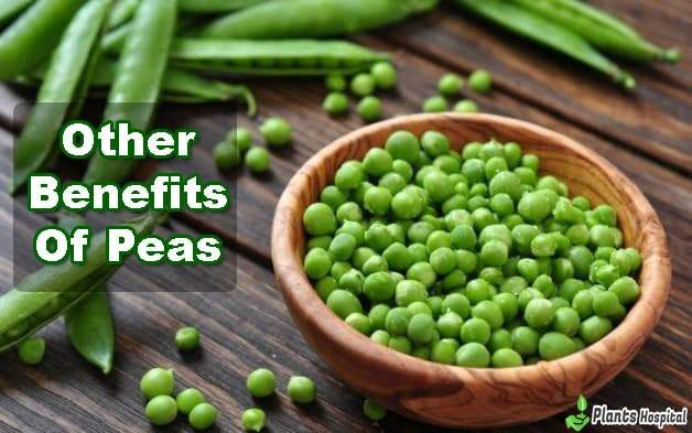 benefits-of-peas