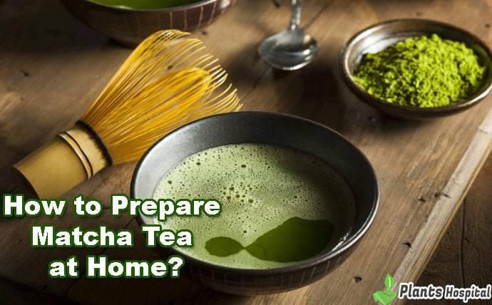 how-to-prepare-matcha-tea