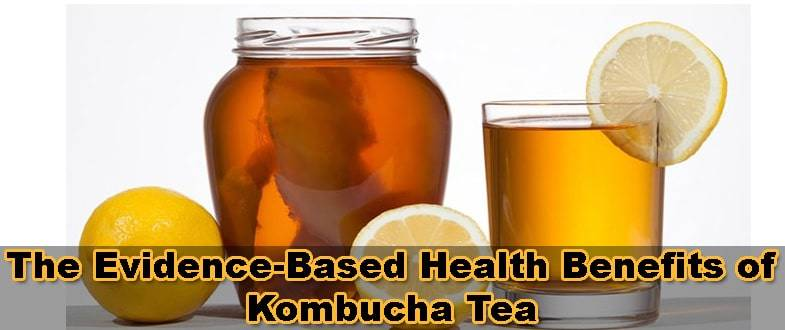 kombucha-tea
