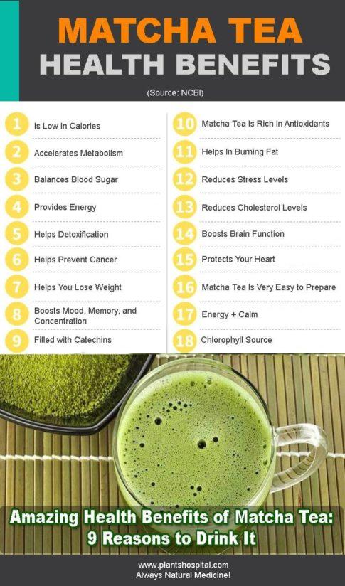 matcha-tea-infographic