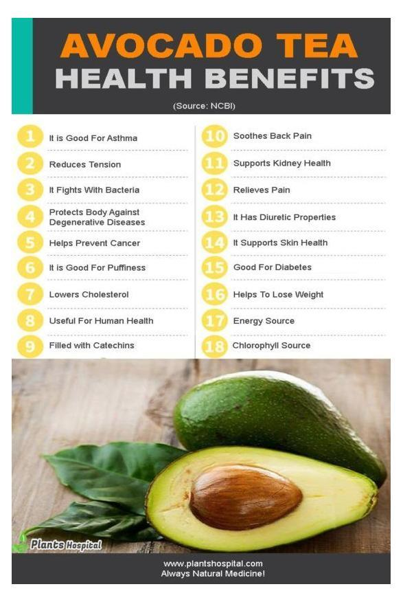 Avocado Leaf Tea: Benefits, Uses, Side Effects And Recommendation