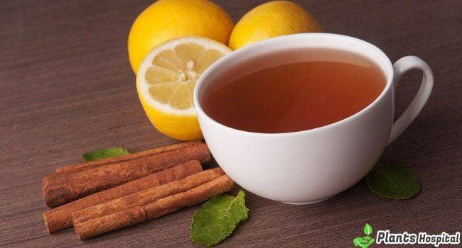 cinnamon-tea-benefits
