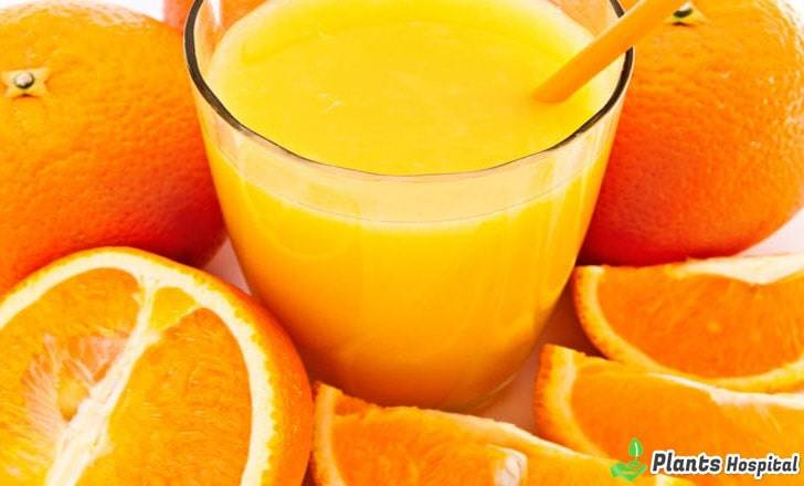 orange-benefits
