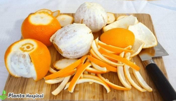 orange-peel-benefits