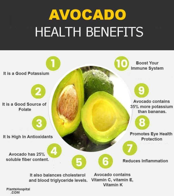 avocado-graphic