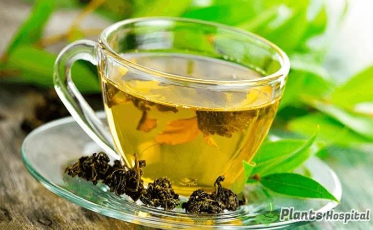 marjoram-tea-benefits