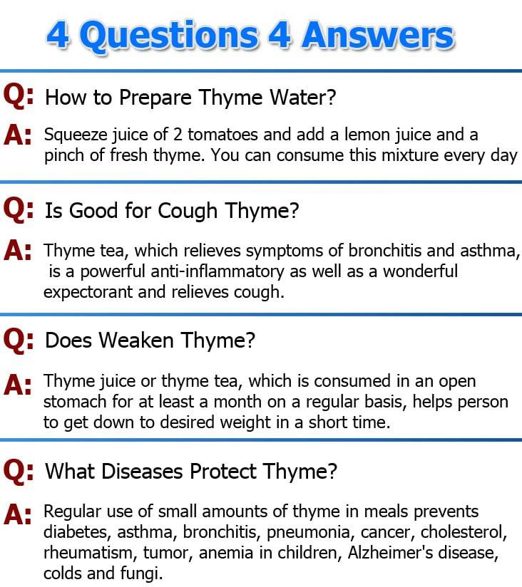 thyme-questions-answers