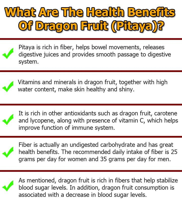 dragon-fruit-(pitaya)-graphic