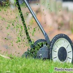 fuel-lawn-mowers