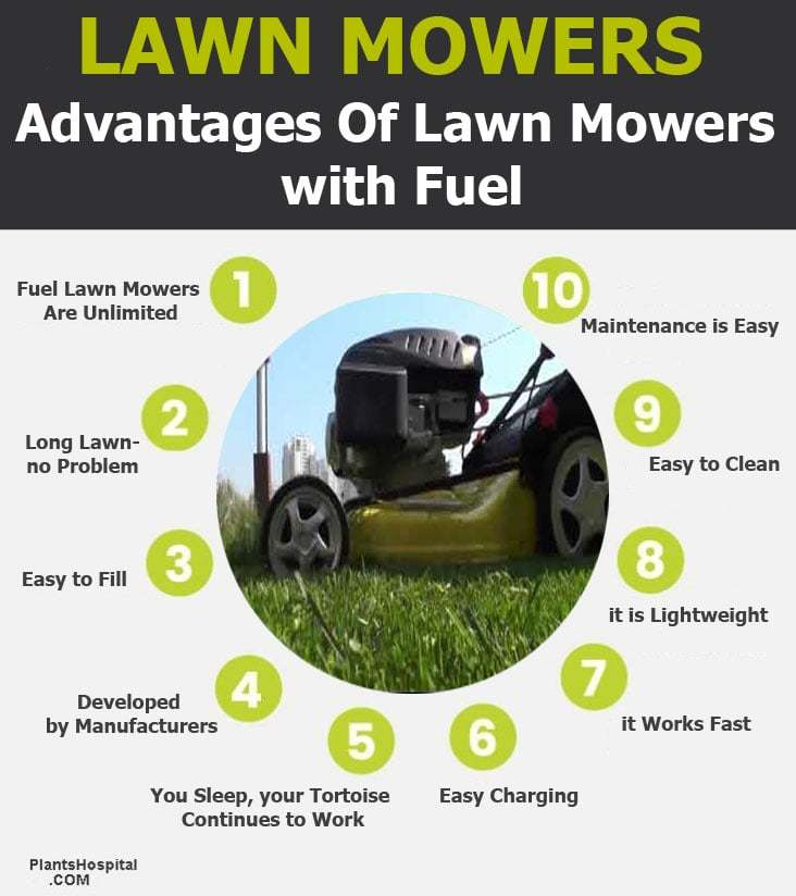 fuel-lawn-mowers-graphic