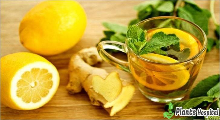 detox-tea-benefits