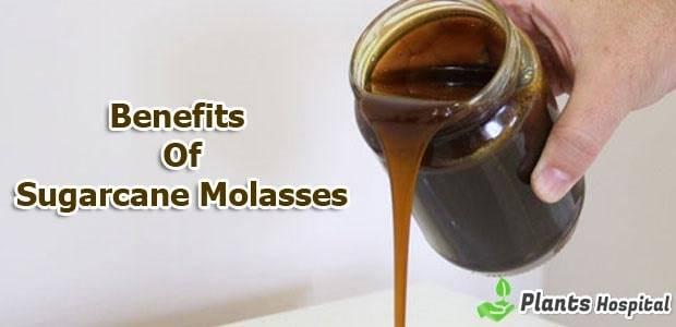 sugarcane-molasses