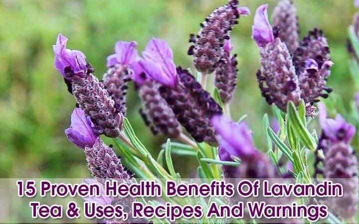 Lavandin-tea-benefits