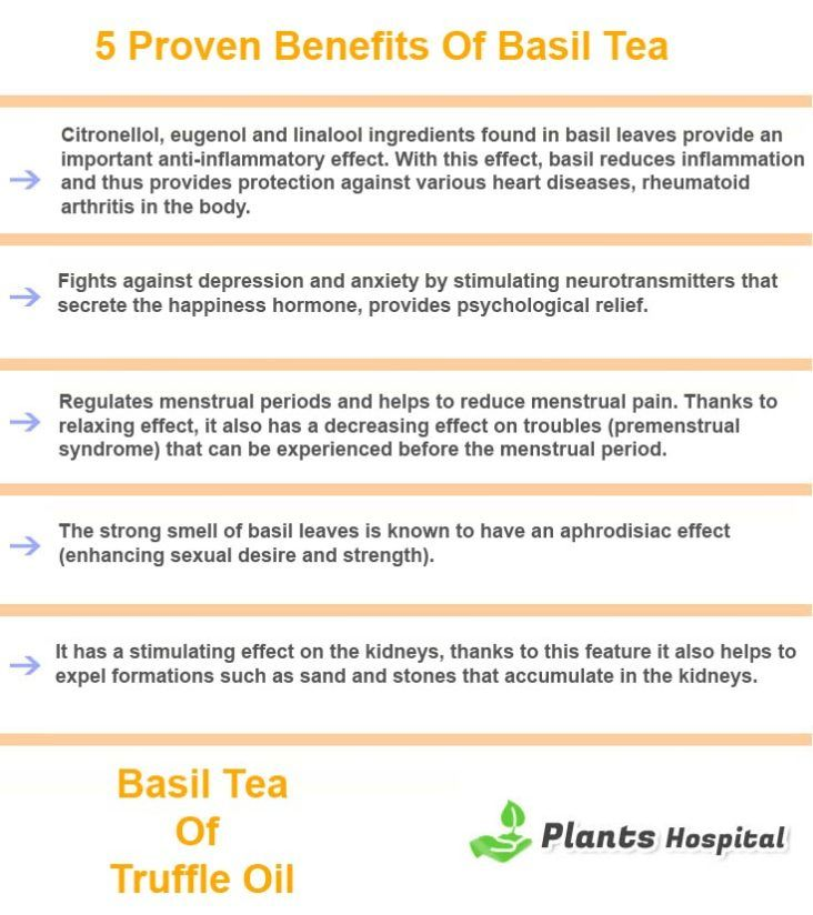 basil-tea-graphic