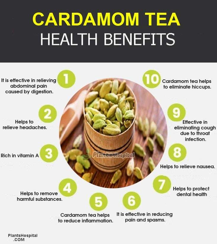 cardamom-tea-graphic