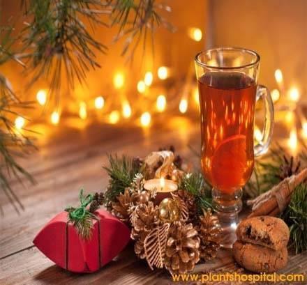 Healthy-Herbal-Teas-Drink-This-Winter