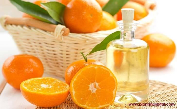 mandarin-essential-oil-health-benefits
