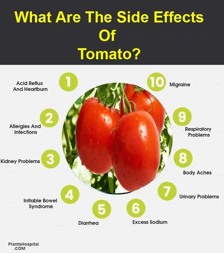 side-effects-of-tomato-graphic
