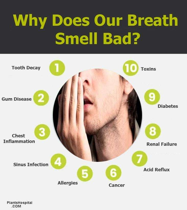 Why-does-our-breath-small-bad