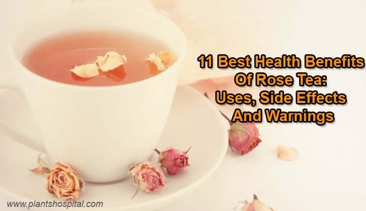 rose-tea-benefits