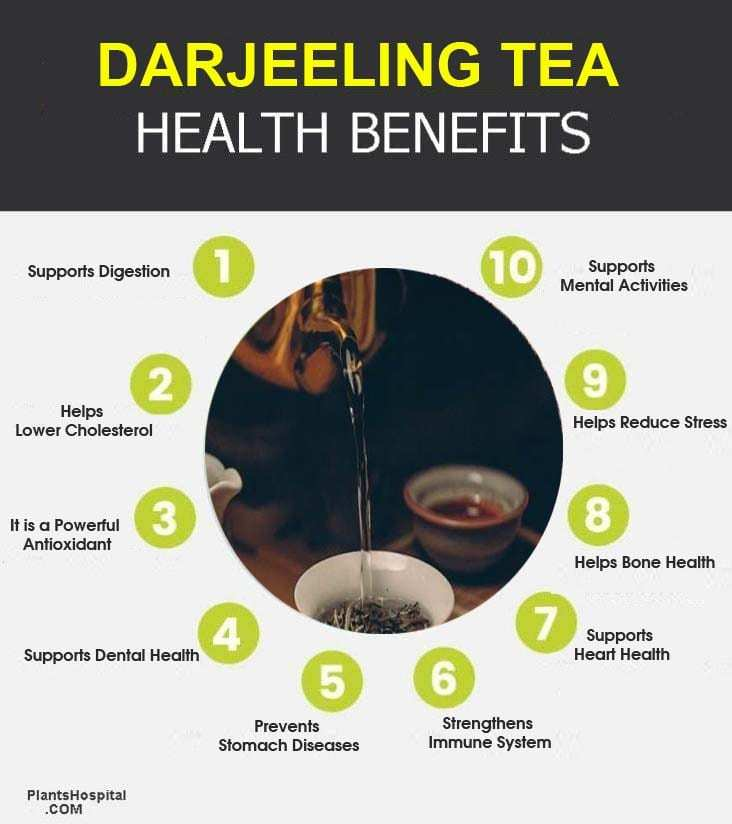 Darjeeling-tea-graphic