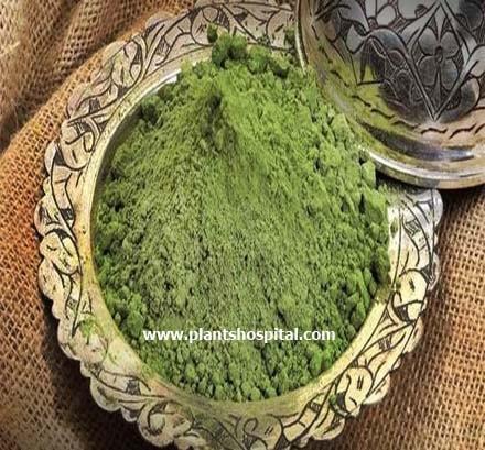 henna-benefits