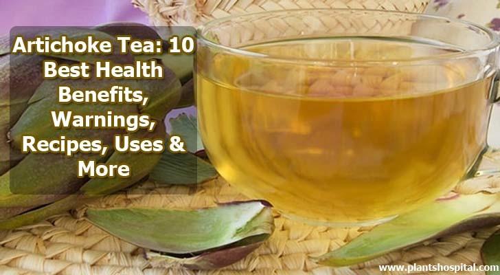 Artichoke-tea-benefits