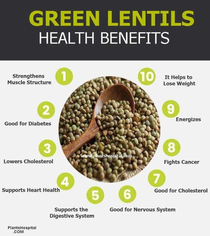 green-lentils-graphic