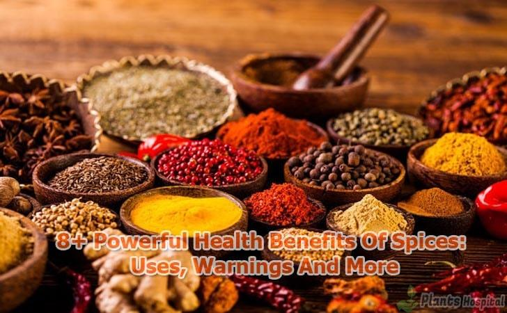 benefits-of-spices