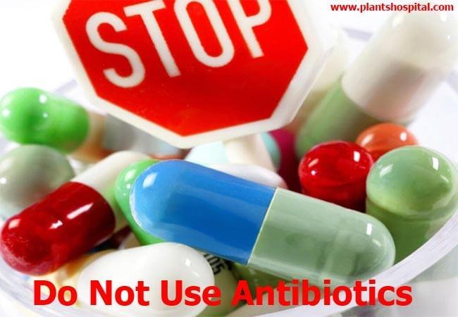 coronavirus-Do-Not-Use-Antibiotics