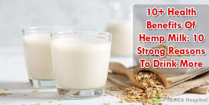 hemp-milk-benefits