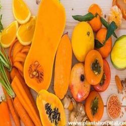 orange-and-yellow-fruits