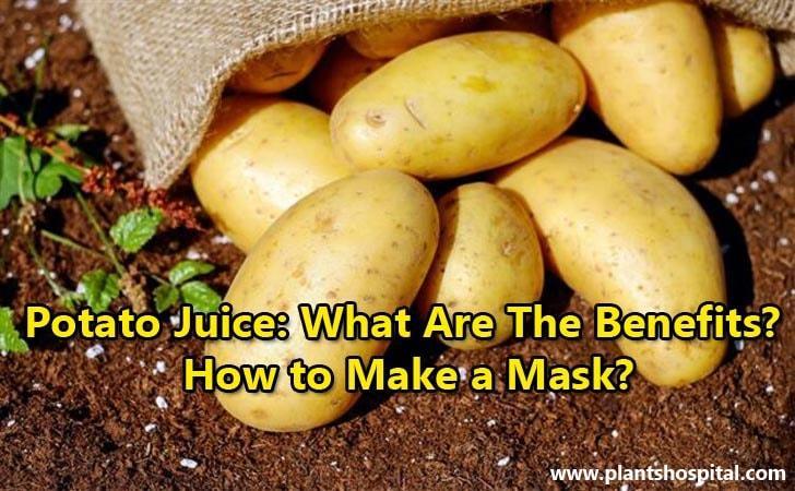 potato-juice-benefits