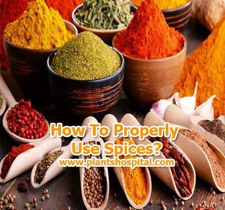 spices-benefits