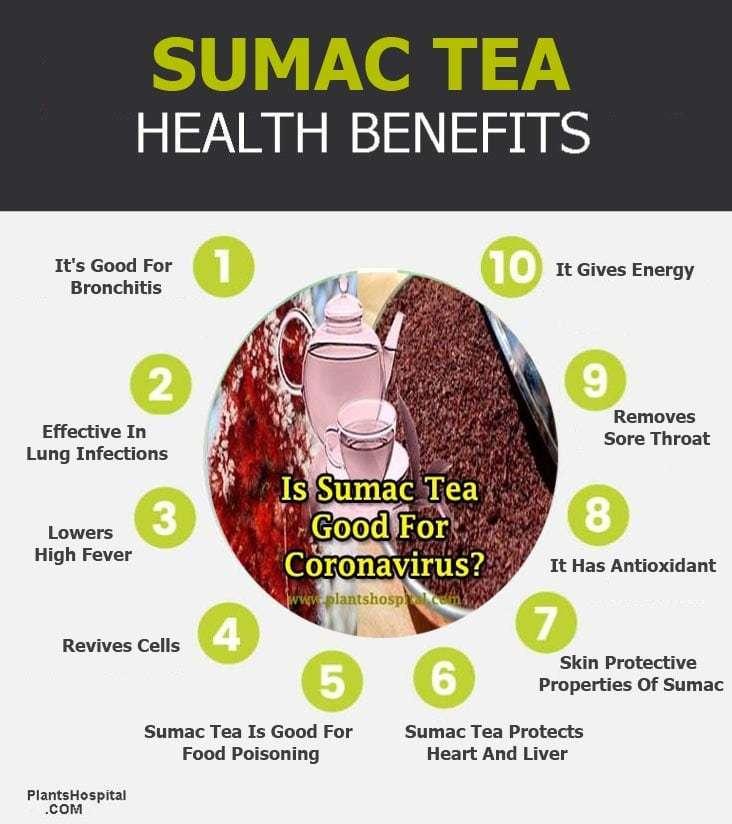 sumac-tea-benefits-graphic
