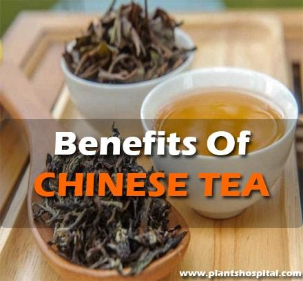 Benefits-Of-Chinese-Tea