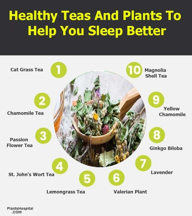 Healthy-Teas-And-Plants-To-help-you-sleep-better-infographic