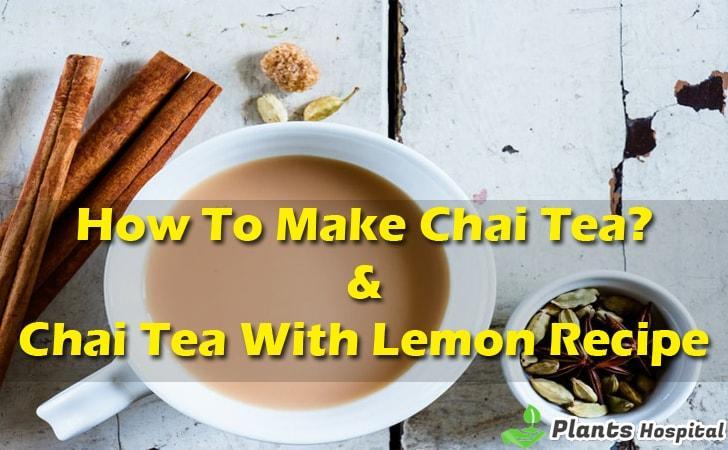chai-tea-recipes
